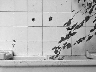 photography black & white tuscany art photography artists