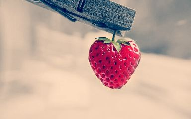 red strawberry fruit sun summer