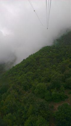 forest summer nature hills fog