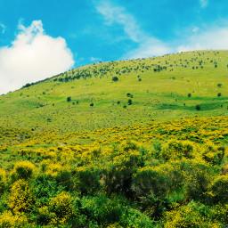 nature sky summer colorful landscape