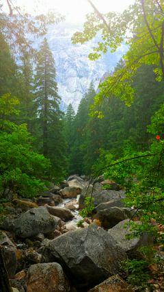nature travel hiking mysanctuary byebyesummer