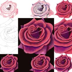 drawstepbystep editstepbystep art flower drawing