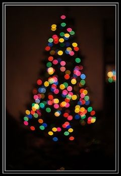 tree lights photography christmas