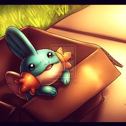 mudkip pokemon