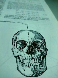 currentlyreading bioengineering